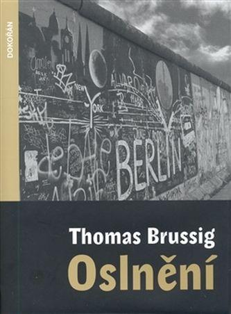 Brussig, Thomas: Oslnění cena od 307 Kč