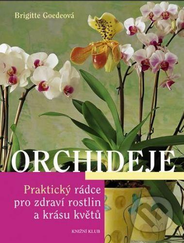 Brigitte Goede: Orchideje - Praktický rádce pro zdraví rostlin a krásu květů cena od 231 Kč