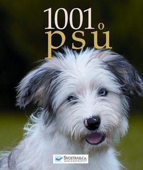 1001 psů cena od 510 Kč