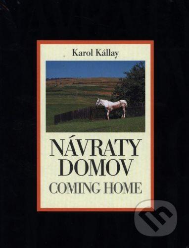 Karol Kállay: Návraty domov cena od 274 Kč