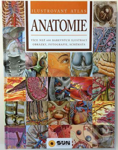 Ilustrovaný atlas Anatomie cena od 377 Kč
