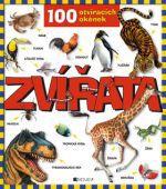 Anna Casalis: Zvířata - 100 otevíracích okének cena od 203 Kč