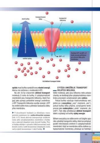 Scientia Biologie buněk cena od 252 Kč