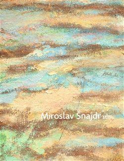Miroslav Schubert, Miroslav Šnajdr: Miroslav Šnajdr st. cena od 631 Kč