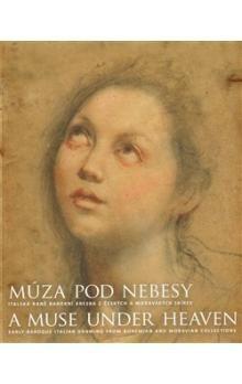 Moravská galerie v Brně Múza pod nebesy cena od 327 Kč