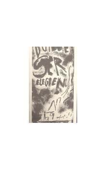 Rainer Maria Rilke: Duinské elegie cena od 372 Kč