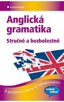 Sonia Brough, Vincent J. Doherty: Anglická gramatika stručně a bezbolestně cena od 237 Kč