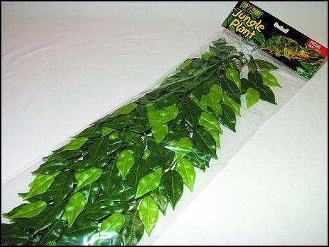 HAGEN Rostlina Ficus velká 70 cm (107-PT3050)