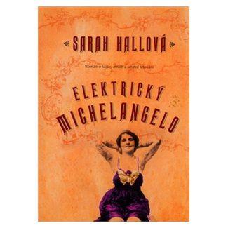 Sarah Hall: Elektrický Michelangelo cena od 136 Kč