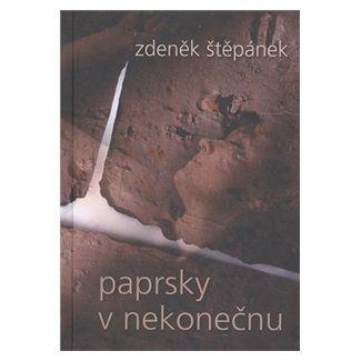 Zdeněk Štěpánek: Paprsky v nekonečnu cena od 100 Kč