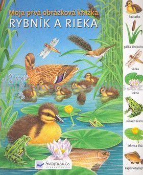 Rybník a rieka - Moja prvá obrázková knižka cena od 120 Kč