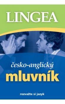 Kolektiv: Česko-anglický mluvník ... rozvažte si jazyk cena od 107 Kč