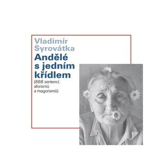 Vladimír Syrovátka: Andělé s jedním křídlem cena od 107 Kč