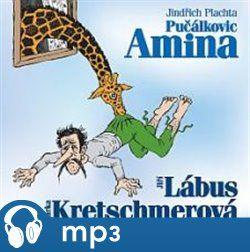 Jindřich Plachta: Pulčákovic Amina - Jindřich Plachta cena od 150 Kč