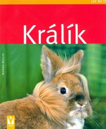 Monika Wegler: Králík - Jak na to cena od 93 Kč