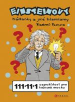 Vladimír Vecheta: Einsteinovy hádanky a jiné hlavolamy cena od 171 Kč