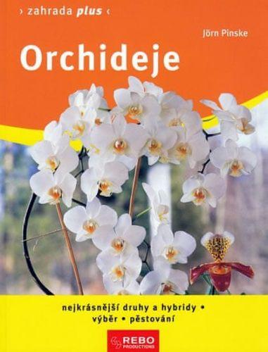 Jörn Pinske: Orchideje cena od 100 Kč