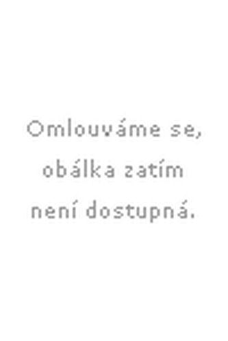 Antonín Strejc: Efemeridy malé 1991-2000 cena od 131 Kč