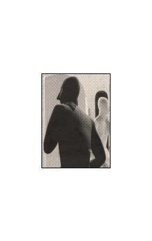 Galerie výtvarného umění Litom Za Zdeňkem Palcarem cena od 120 Kč