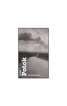 Chaim Potok: Já hlína jsem cena od 135 Kč