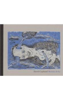 David Cajthaml: Mořská dívka cena od 146 Kč