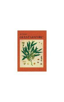 A.J. Akopov: Olej čajovníku cena od 22 Kč