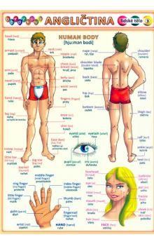Petr a Kupka: Obrázková angličtina 3 lidské tělo cena od 18 Kč
