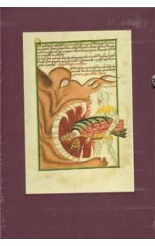 Gallery Jenský kodex cena od 1650 Kč