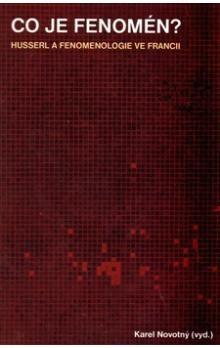 Karel Novotný: Co je fenomén? cena od 268 Kč