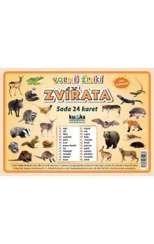 Kupka a Petr: Volně žijící zvířata - Sada 24 karet cena od 44 Kč
