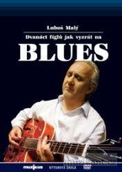 Malý Luboš: 12 fíglů jak vyzrát na blues - Kytarová škola - DVD cena od 141 Kč