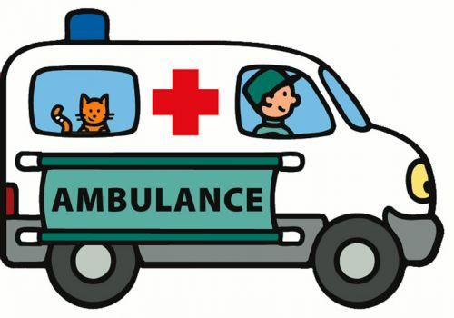 Ambulance cena od 95 Kč