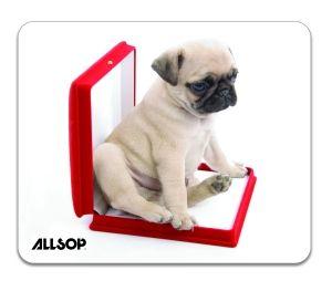 Allsop, mops v krabičce - 06411