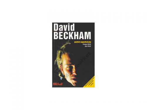Fergus Kelly David Beckham cena od 85 Kč