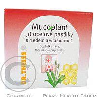 DR.THEISS NATURWAREN HOMBURG Mucoplant jitrocelové pastilky-med+vitamin C 50g