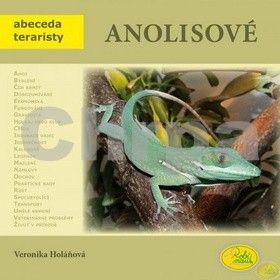 Veronika Holaňová: Anolisové cena od 78 Kč