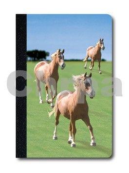 ABC Develop Deníček Úžaska Cválající koně