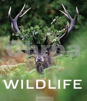 AB Art press Wildlife cena od 942 Kč