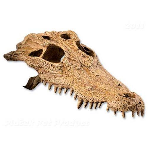 Hagen Exo Terra Dekorace krokodýlí lebka