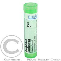EUGENIA JAMBOSA CH5 granule 4 g cena od 72 Kč