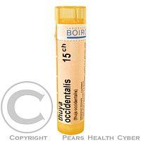 THUYA OCCIDENTALIS CH15 granule 4 g cena od 64 Kč