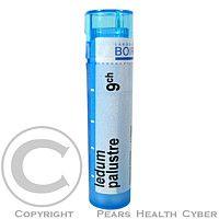 LEDUM PALUSTRE CH9 granule 4 g cena od 69 Kč
