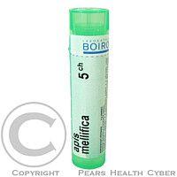 APIS MELLIFICA CH5 granule 4 g cena od 72 Kč