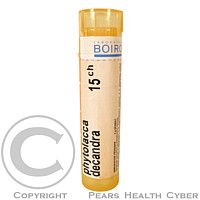 PHYTOLACCA DECANDRA CH15 granule 4 g cena od 72 Kč