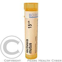 LACHESIS MUTUS CH15 granule 4 G cena od 72 Kč