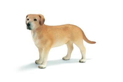 Schleich Labrador 16386 cena od 0 Kč