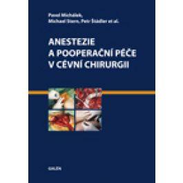 Pavel Michálek, Michael Stern, Petr Štádler: Anestezie a pooperační péče v cévní chirurgii cena od 645 Kč