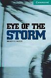 Loader Mandy: Eye of the Storm: + CD cena od 155 Kč