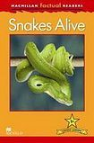 Macmillan Factual Readers Level 1+ Snake Alive cena od 90 Kč