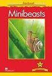 Macmillan Factual Readers Level 3+ Minibeasts cena od 120 Kč